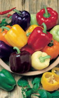 Перец РАДУГА - смесь ярких окрасок, ранние сорта!