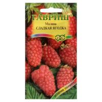Малина Сладкая ягодка, 10 шт