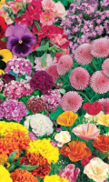 Специальные цветочные смеси для оформления памятников