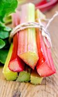 Ревень ВИКТОРИЯ - вкусно и полезно! Для компотов, салатов, джемов!
