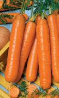 Морковь ВИТАМИННАЯ 6 (ЛЕНТА)